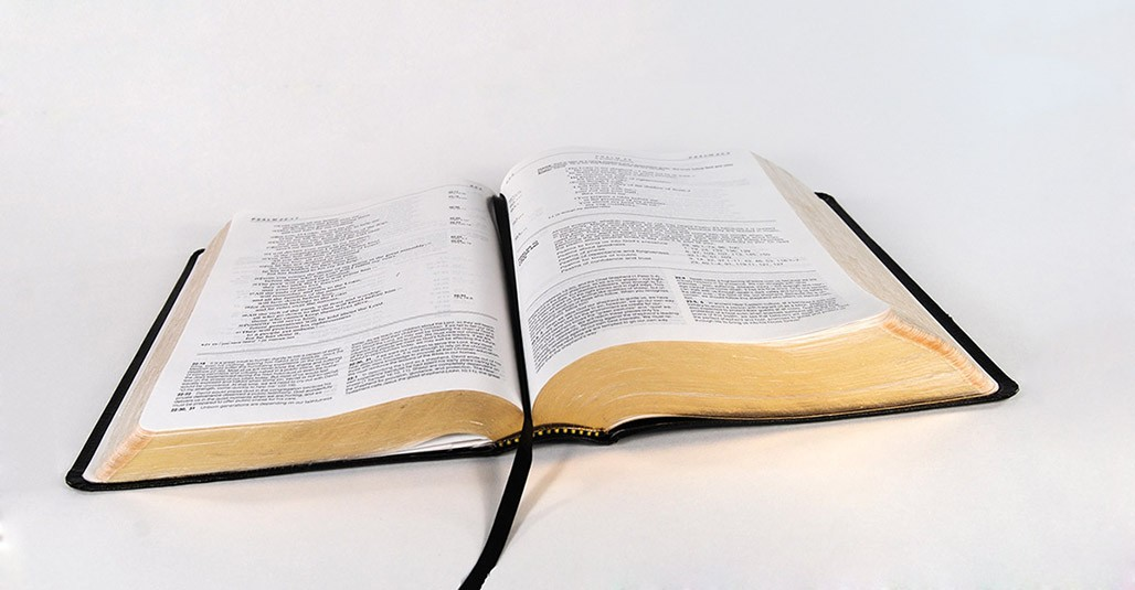 IFD217 – How to Study the Bible