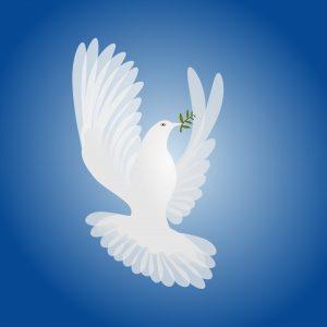 white-dove-spirit-of-peace-1244811-1920x1920